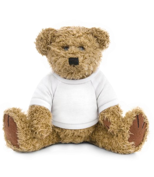 Teddy bear - White - Vorn