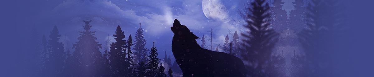 wolf-t-shirts-1600x250